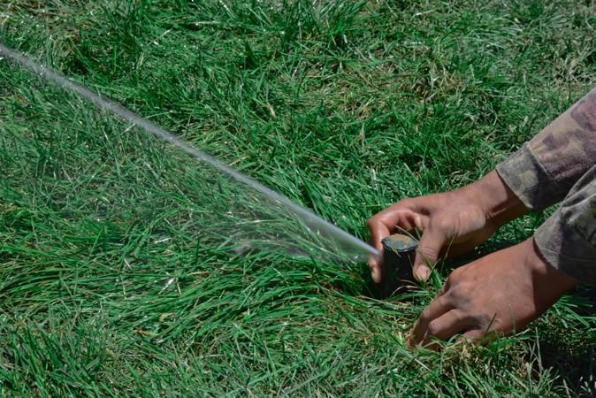 GreenSceneTN.com is top choice for irrigation start-up.